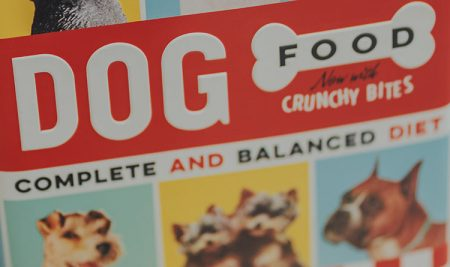 Understanding Dog Food Ingredients – What to Look for and What to Avoid